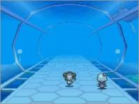 underwatertunnel